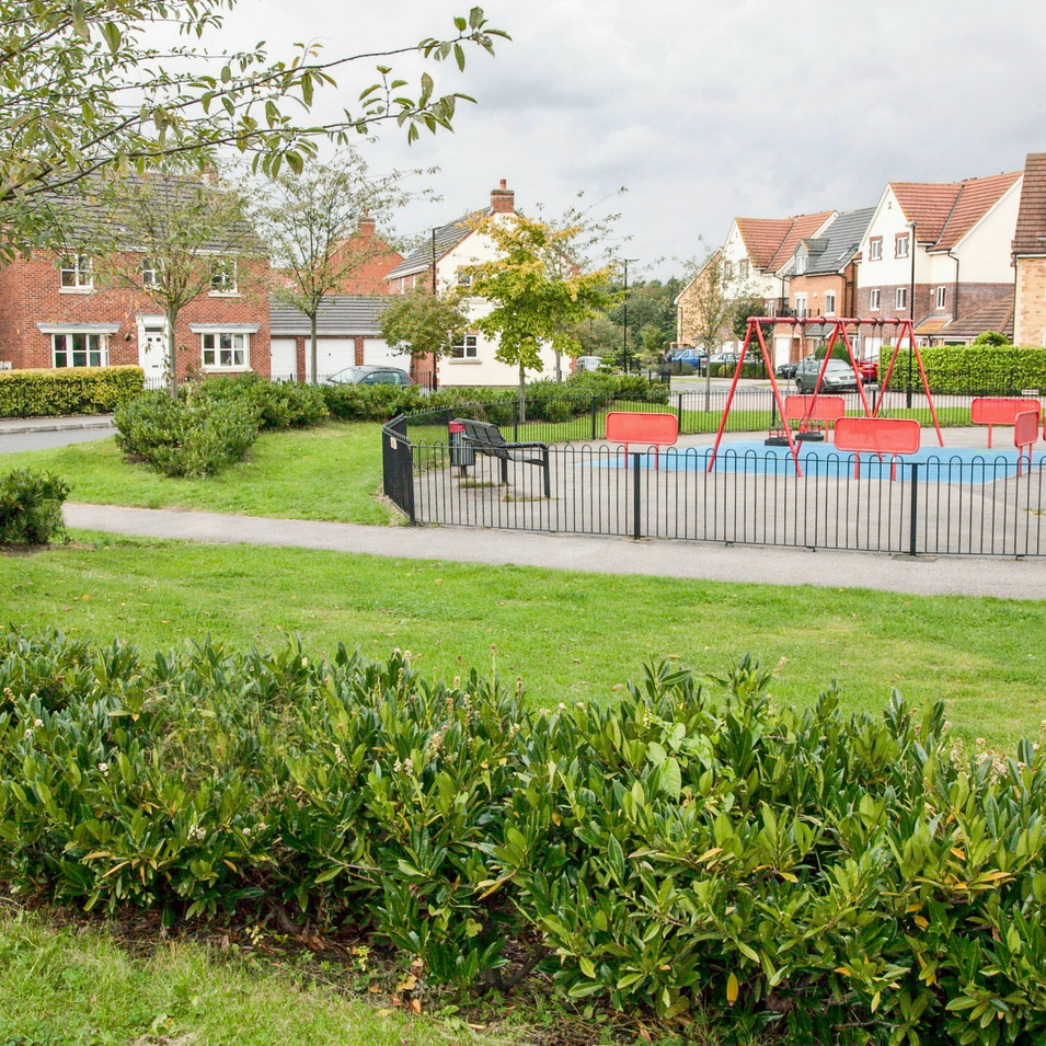Cortonwood playgroundcc_edited.jpg