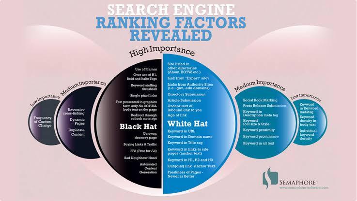 Search Engine Ranking Fcators