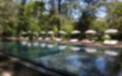 pool people sunbathing.png
