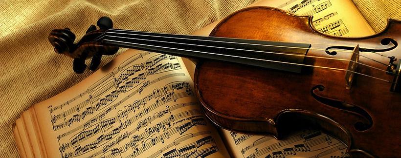 Violino Musicaviva.jpg