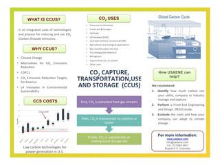 CARBON DIOXIDE (CO2) CAPTURE – TRANSPORTATION – STORAGE/SEQUESTRATION (CCS)