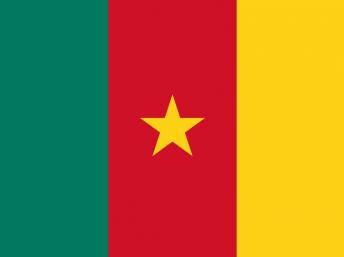 Etape 3 : le Cameroun