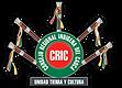 logo cric.png