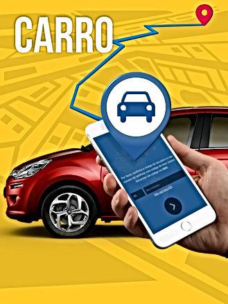 OnlineSat Carro