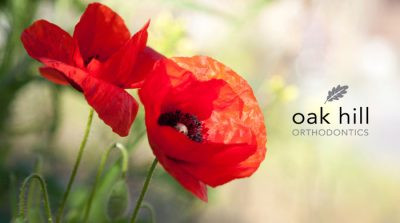 What's the significance of a Poppy for Remembrance Day?