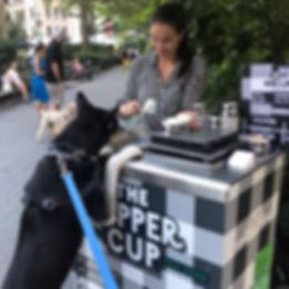 ThePupperCup_Rupert1_edited.jpg