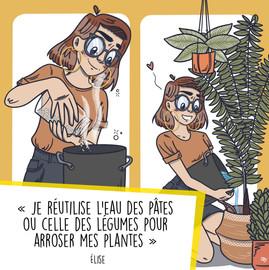 ENCORE - Plantes