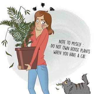 PLANTS VS CAT