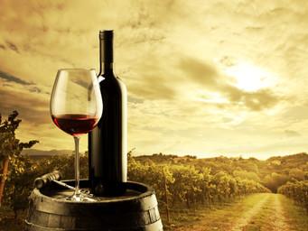 TOP 10 des personnalités les plus influentes dans le monde du vin aux États-Unis