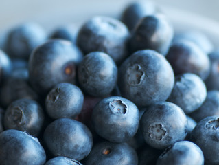 7 Spots To Get Your U-Pick Blueberry Fix