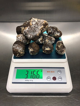 GA Black Truffles - 30cube weight.JPG