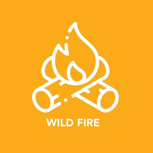 Wild Fire Tribe Shirt