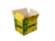 box transparent open flaps.png