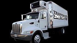 Service de transport Frigorifique par camion, cube, remorque.  Service d'entreposage Réfrigéré et à sec