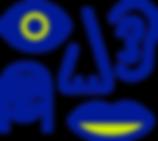 noun_experience_402054.png