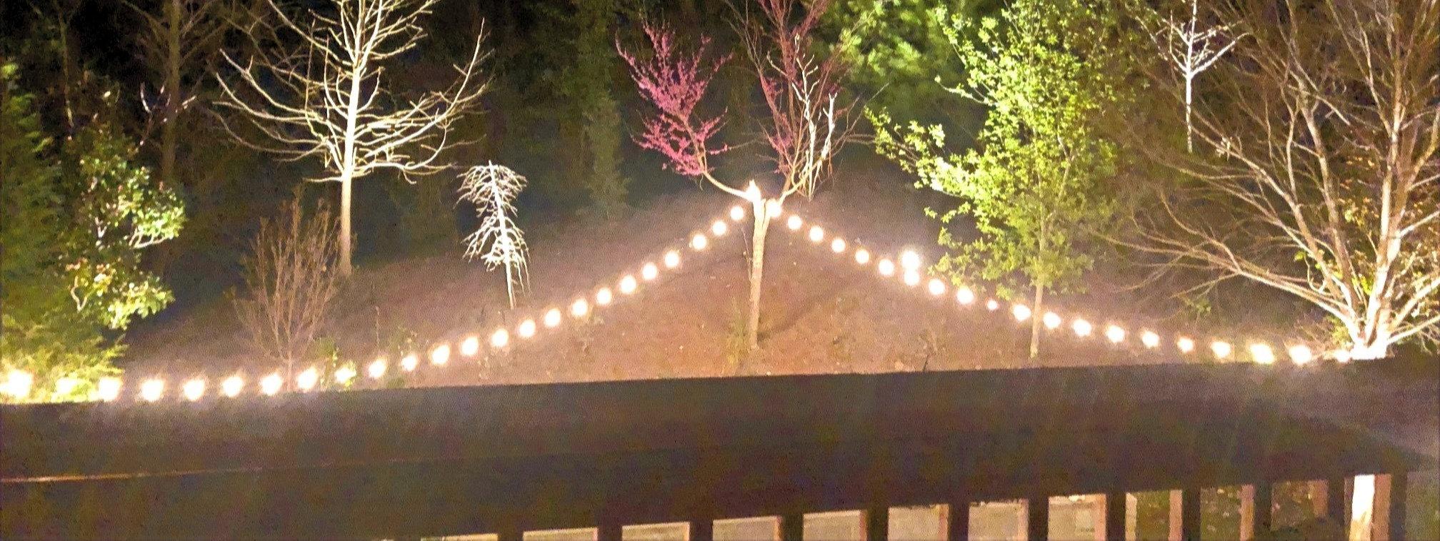 Outdoor Lighting - Garden