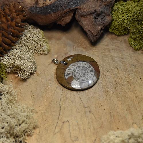 Pendentif - Ammonite