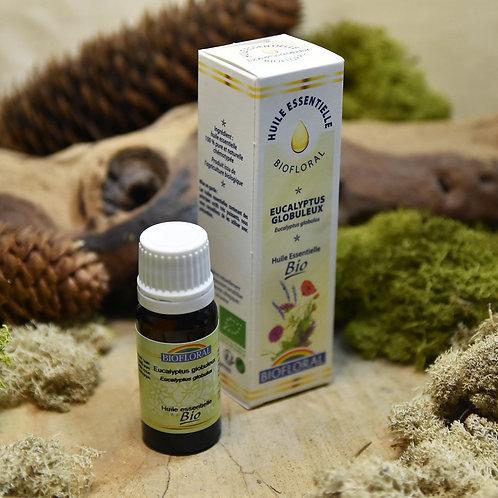 Huile essentielle bio - eucalyptus globuleux 10ml