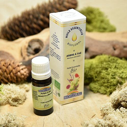 Huile essentielle bio - arbre à thé 10ml