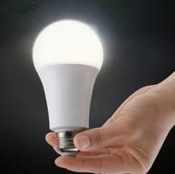 Emergency LED Light Bulb