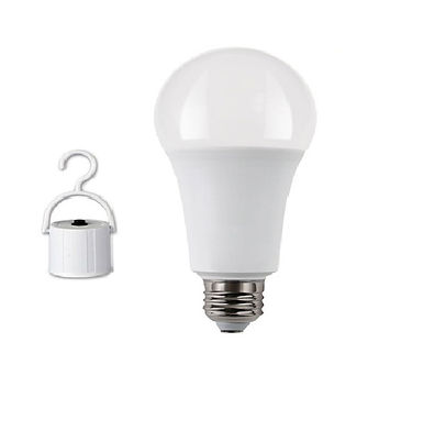 bulb10.jpg