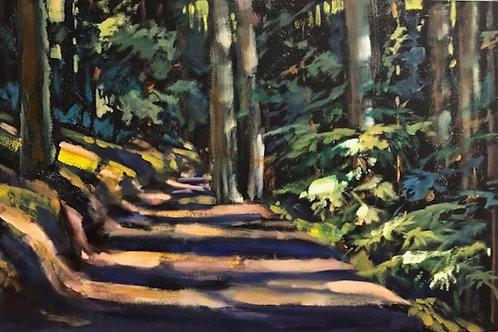 Oakland Hills Path