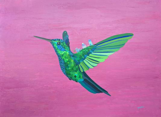 colibri.03de045d.jpg