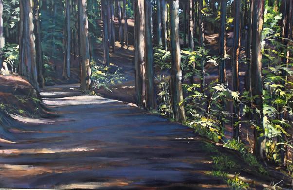 15.Redwoods 36x60. 1500jpg.jpg
