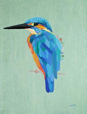 Kingsfisher.jpg