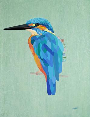 kingsfisher.8c2ce9e7.jpg