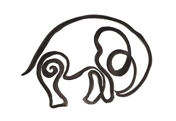 Lijntekening olifant