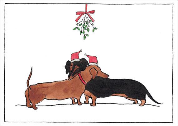 Kerst: Teckels