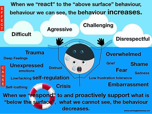 The Behaviour Iceberg