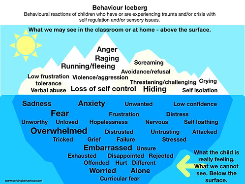 The Behaviour Iceberg v2