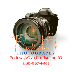 CLICK TO FOLLOW FLUFFISTA