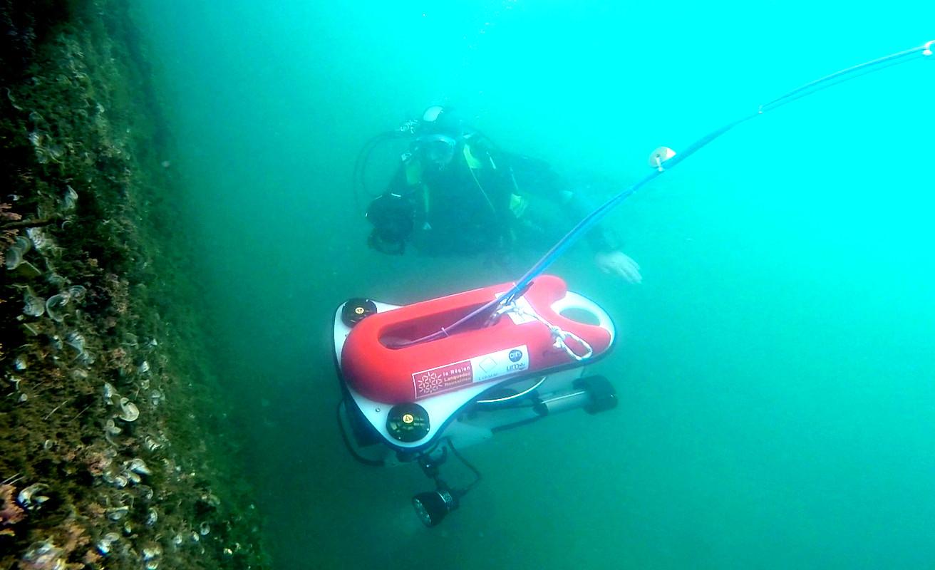 ROV Murex action