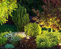 Landscape Lighting Westchester County Putnam County