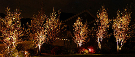 Landscape lighting westchester greenwich landscape lighting mozeypictures Image collections