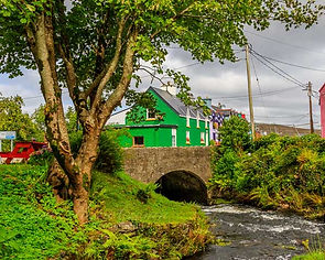 The Beautiful Village of Ardgroom , Bear