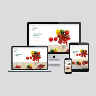 3. Website vormgeving en realisatie Klop
