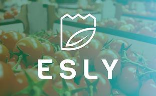 logo Esly - Seasun (zzplogo)