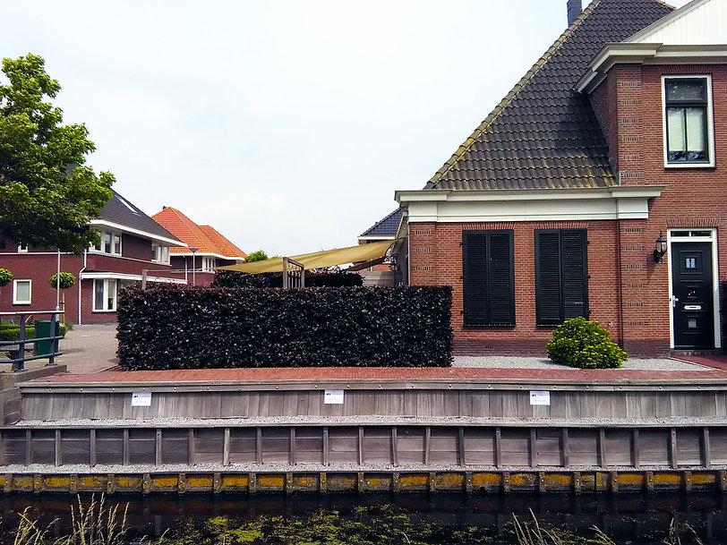 3. Haag snoeien - heg snoeien Hoorn - Tu