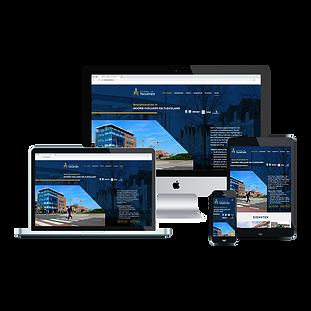 8. website vormgeving en realisatie Ster