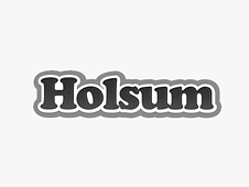 holsum-logo.png