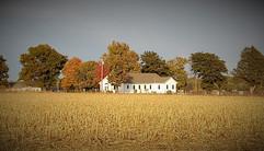 """Union Baptist Church"" Vicky Thomas"