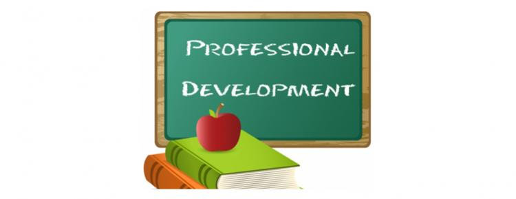 Professional Development Leader