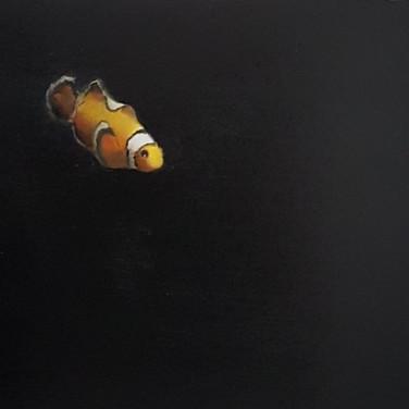 Clownfish 2.