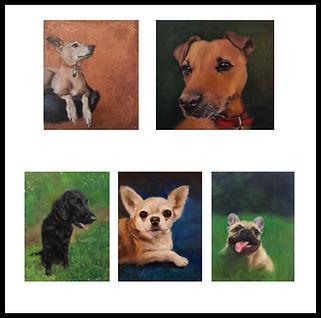 5 dogs .jpg