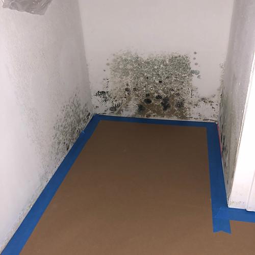 Water leak & Reapir