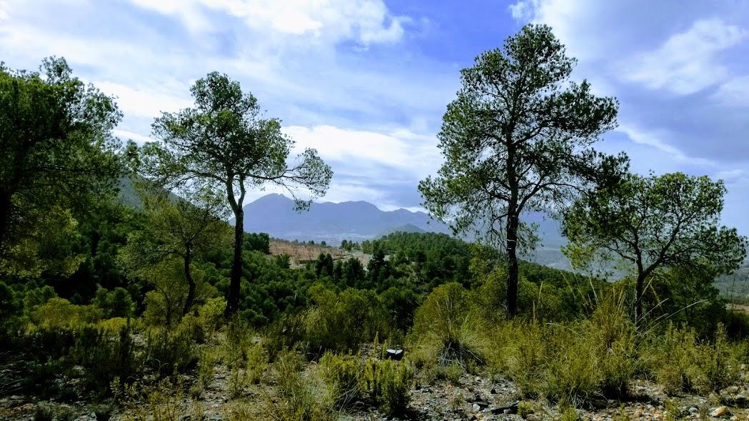 Sierra Maria Los Velez Natural Park